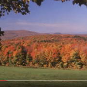 Science of autumn